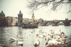Why choose a business for sale in the Czech Republic?